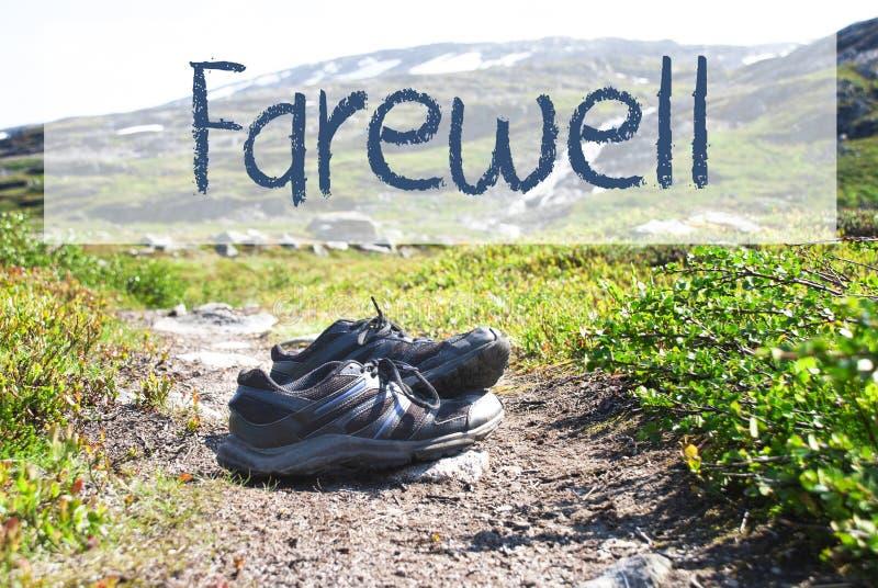 Sapatas no trajeto Trekking, adeus do texto imagem de stock royalty free
