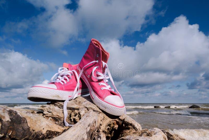 Sapatilhas cor-de-rosa novas fotos de stock royalty free