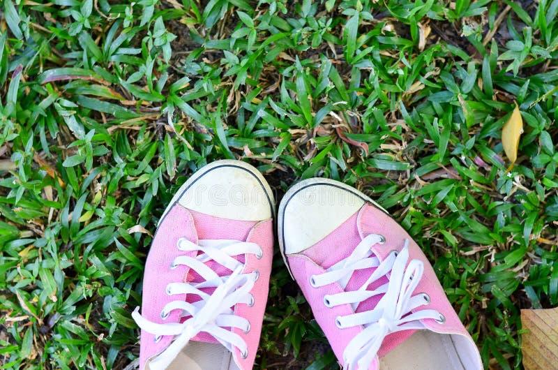 Sapatilhas inversas cor-de-rosa fotografia de stock royalty free