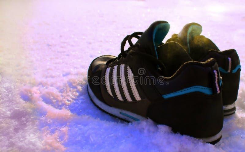 Sapatilhas na neve fotografia de stock