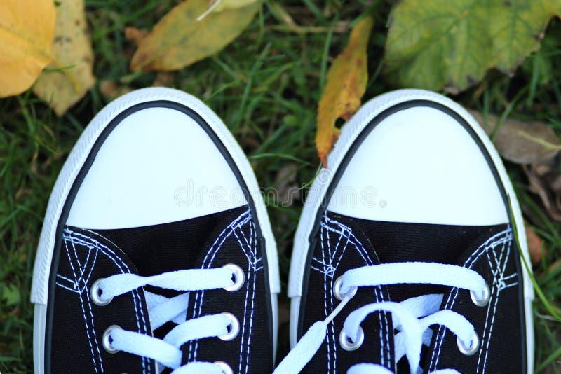 Sapatilhas pretas em um fundo das folhas de outono imagem de stock