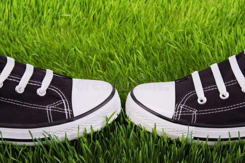 Sapatos de ginástica da juventude em uma grama verde imagem de stock