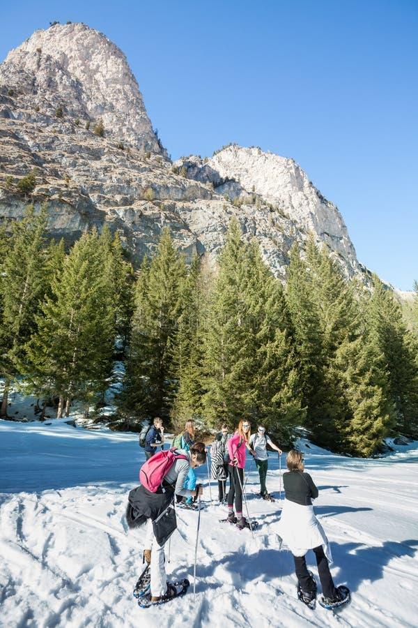 Sapatos de neve, grupo de caminhantes nas montanhas na neve fotografia de stock