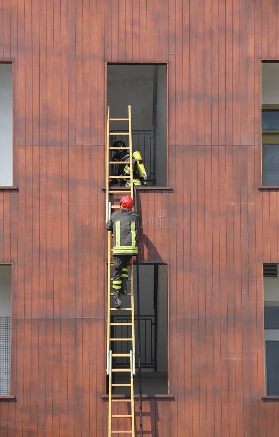 sapeurs-pompiers sur l'échelle en bois pendant la lutte contre l'incendie dans le sapin images libres de droits