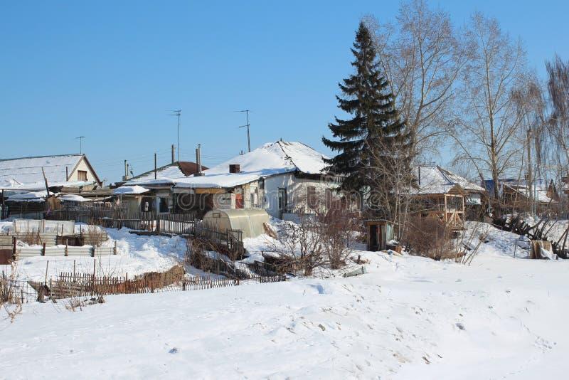 Sapin à feuilles persistantes d'arbre conifére de village de vue près d'une maison en bois pendant l'hiver photos stock