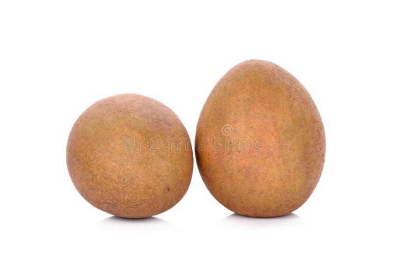 Sapodillafrukt på vit bakgrund royaltyfri fotografi