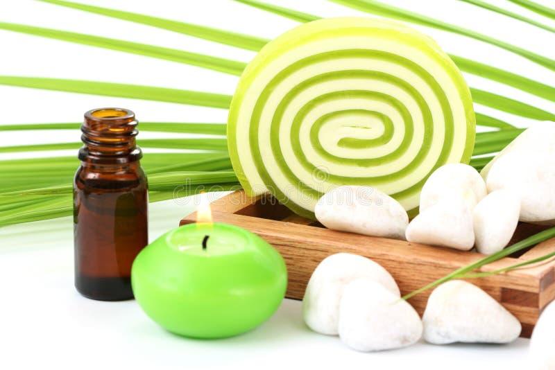 Download Sapone immagine stock. Immagine di igiene, wellness, freschezza - 7309477