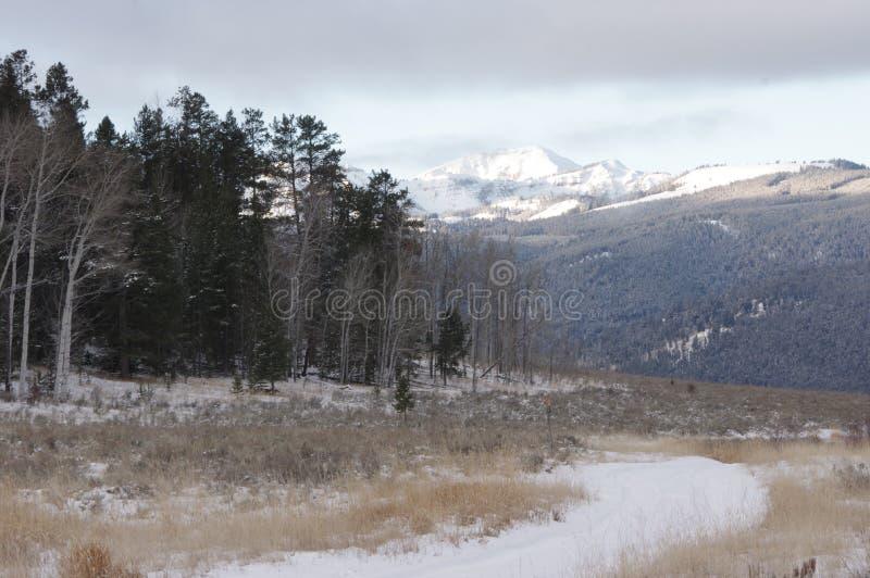 Sapphire Mountains em Montana no inverno fotografia de stock