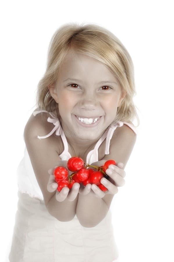 Sappig Fruit stock fotografie