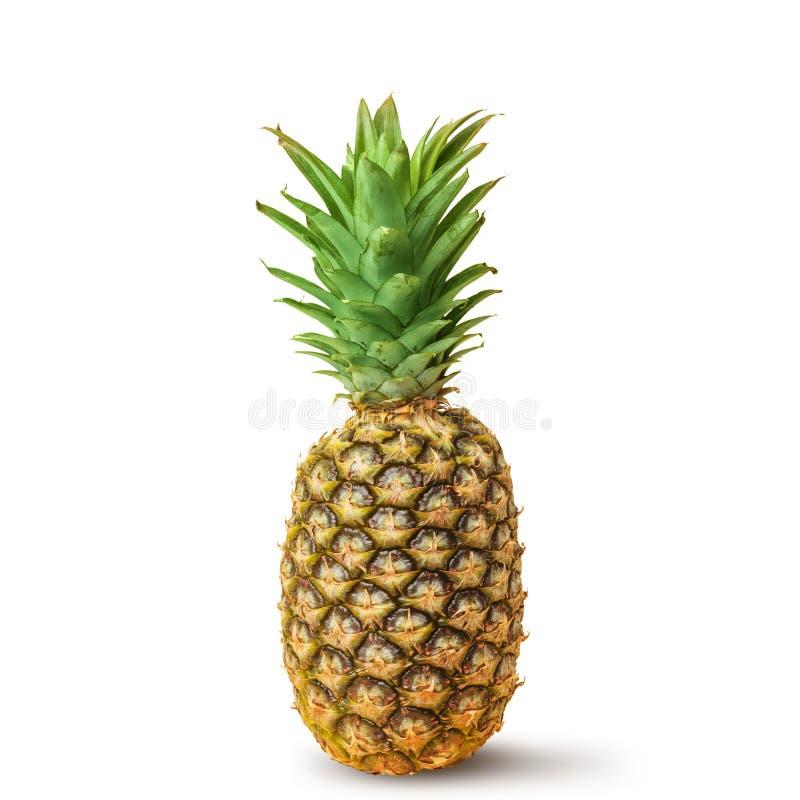 Sappige ananas op een witte achtergrond Ge?soleerde royalty-vrije stock afbeeldingen