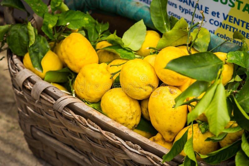 Sappige heldere citroenen in een mand stock afbeelding
