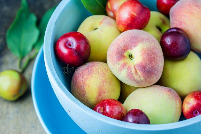 Sappige perziken en abrikozen stock fotografie