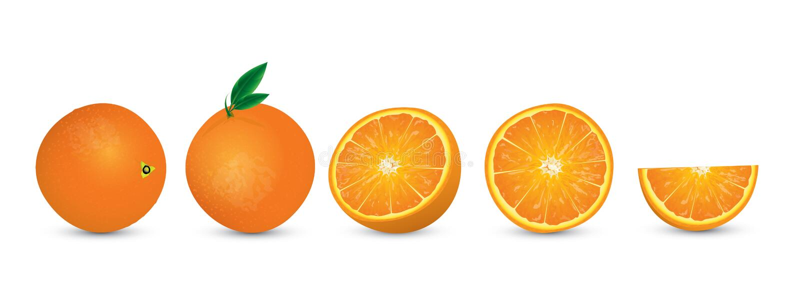 Sappige sinaasappelenillustratie stock afbeelding