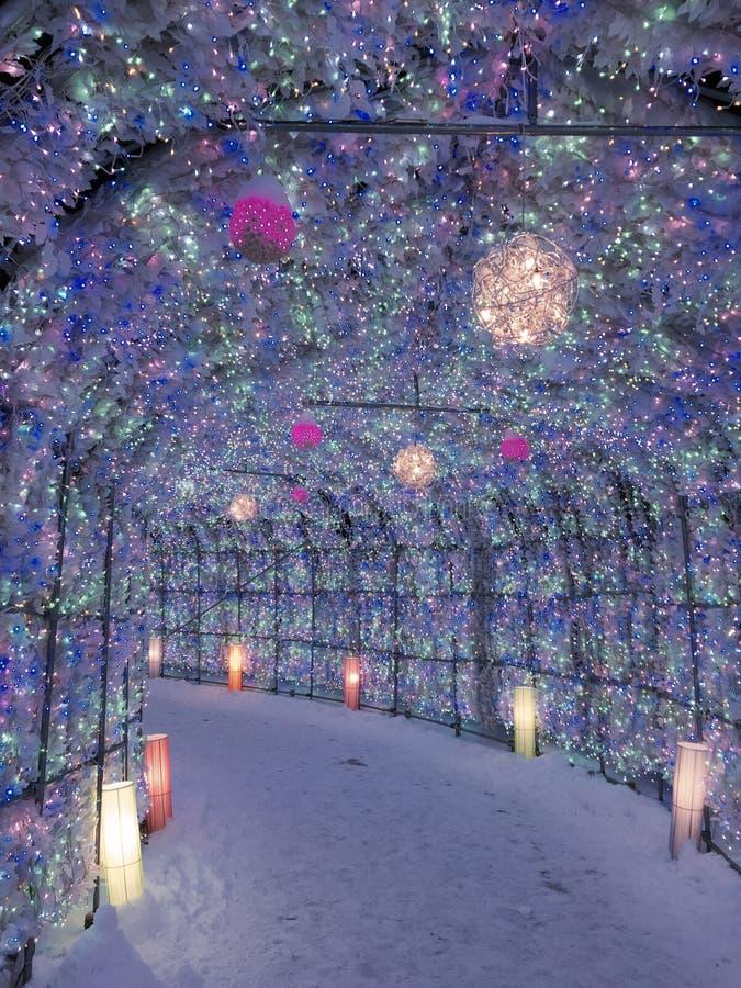 Sapporo biały Latarniowy festiwal w hokkaidu, Japonia zdjęcie stock