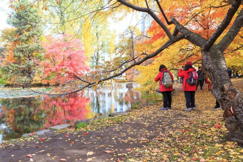 Travel Sapporo in Autumn. stock image