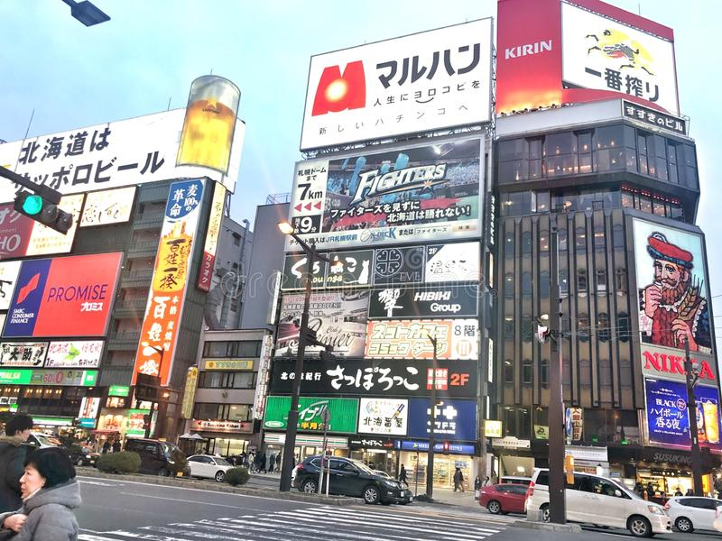 Sapporo utan snö royaltyfri bild