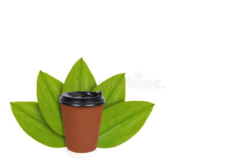 Saque el café en taza terma disponible en el fondo de hojas verdes Aislado en blanco noción del origen natural fotografía de archivo libre de regalías