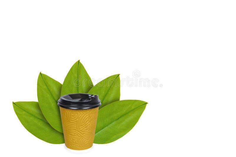 Saque el café en taza terma disponible en el fondo de hojas verdes Aislado en blanco noción del origen natural imagen de archivo libre de regalías