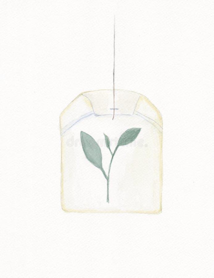 Saquinho de chá verde orgânico ilustração do vetor