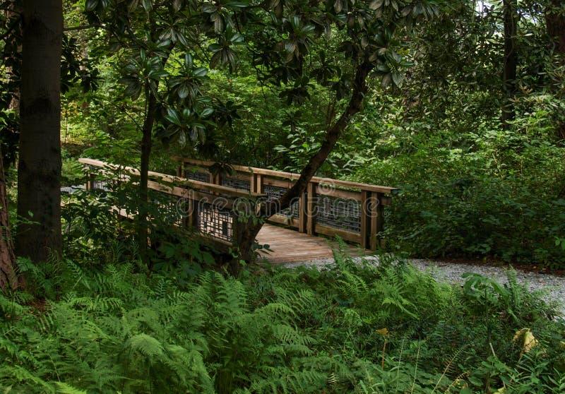 Sara P Diuków ogródy w Durham, Pólnocna Karolina obrazy stock
