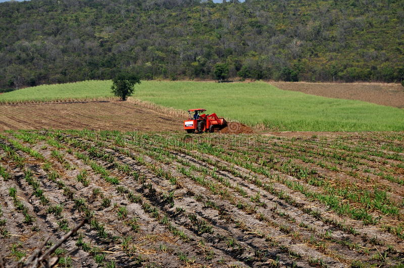Saraburi, Thailand: Farmer Plowing Fields. Farmer at work driving his orange tractor in a newly plowed field readying it for the next planting, on the rural stock photo