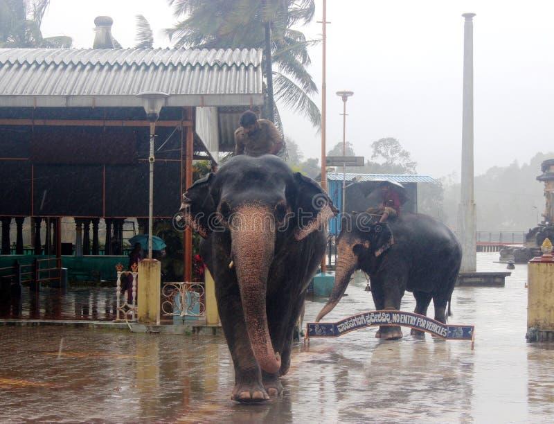 Sarada temple of shringhri royalty free stock photo