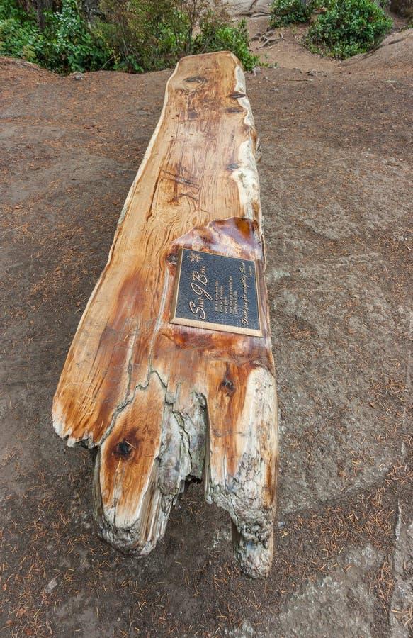Sarah Burke Memorial Site stock afbeelding