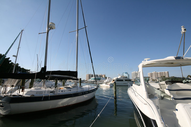 Sarasota Bayfront immagine stock libera da diritti