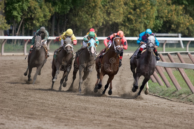 Saratoga Racetrack_7678-1S royalty free stock images