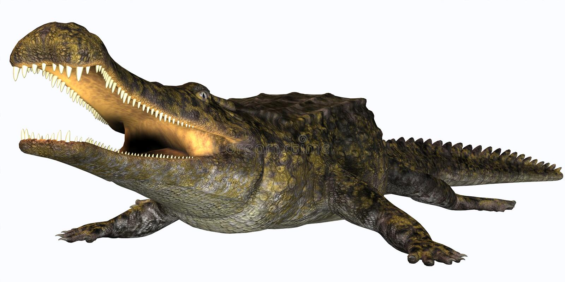 Sarcosuchus gad ilustracja wektor