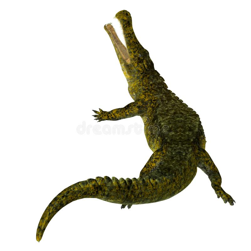 Sarcosuchus Reptile Aggression royalty free stock images