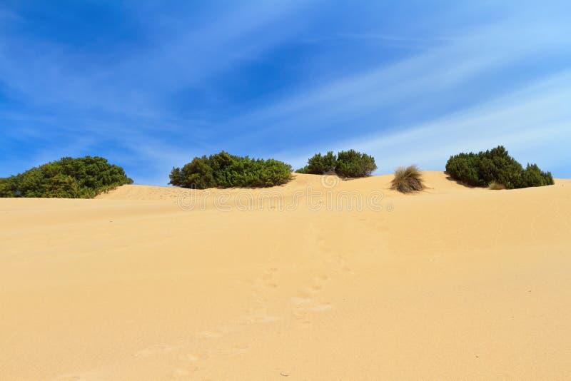 Sardegna - dune dans Piscinas image stock