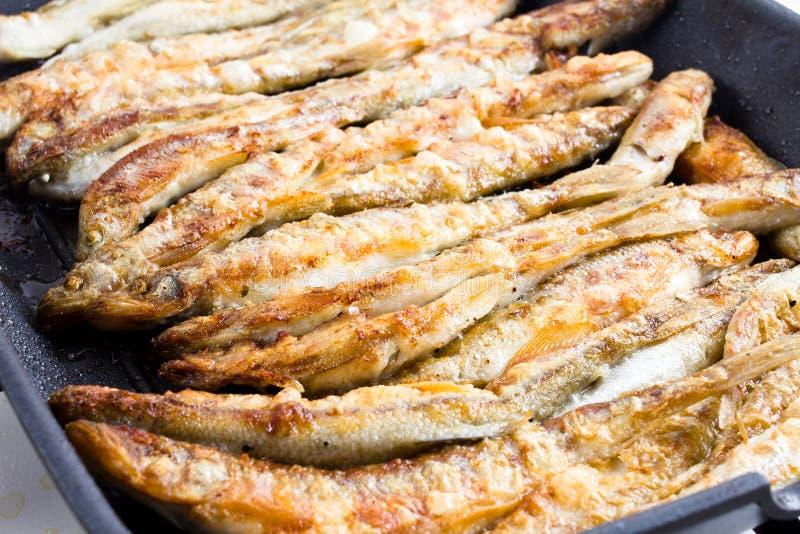 Sardinas que son preparadas con la sal del mar en un hotpl de la parrilla de la barbacoa imagen de archivo