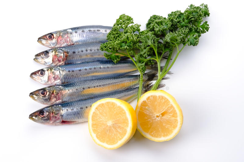 Sardine. Cooking ingredient series sardine. available for clipping work stock photos