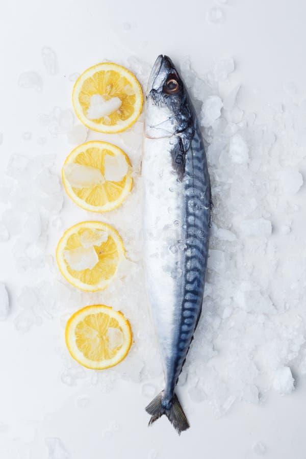 Sardine crude su una tavola con ghiaccio ed il limone Vista da sopra fotografie stock