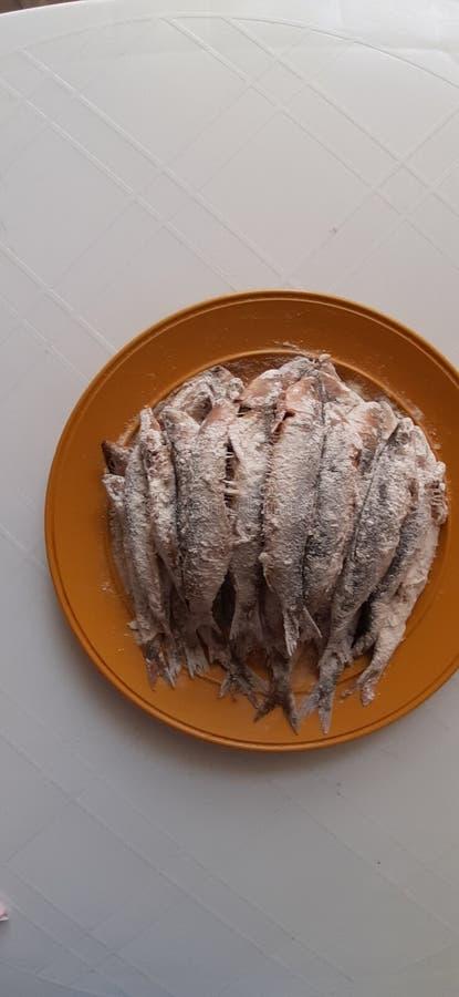 Sardine dishe. Sardine . , meal, cooking, salad, healthy, dishes stock image