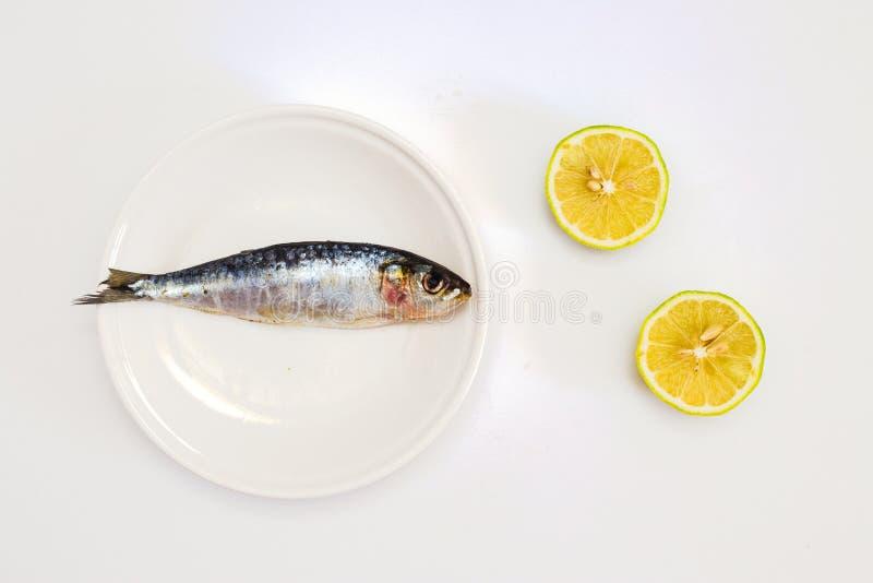 Sardine du plat blanc et du citron coupé en tranches Composition minimaliste photographie stock