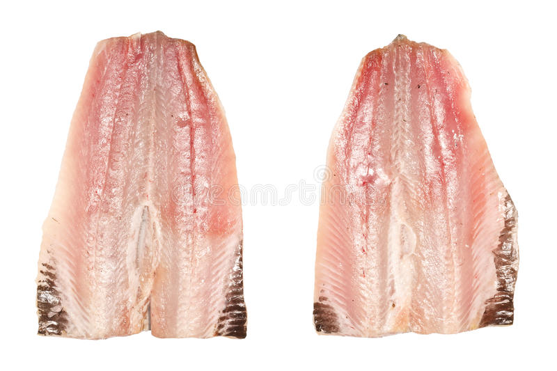 Sardine Fillets. Top view of two fresh raw sardine fish fillets. Isolated on white royalty free stock image