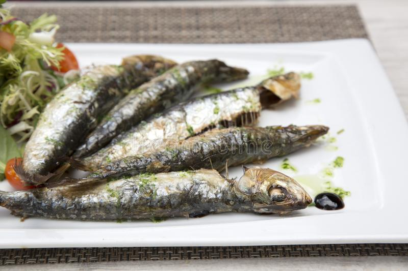 Sardine Fish, Majorca. Sardine Fish in Majorca, Spain royalty free stock photos