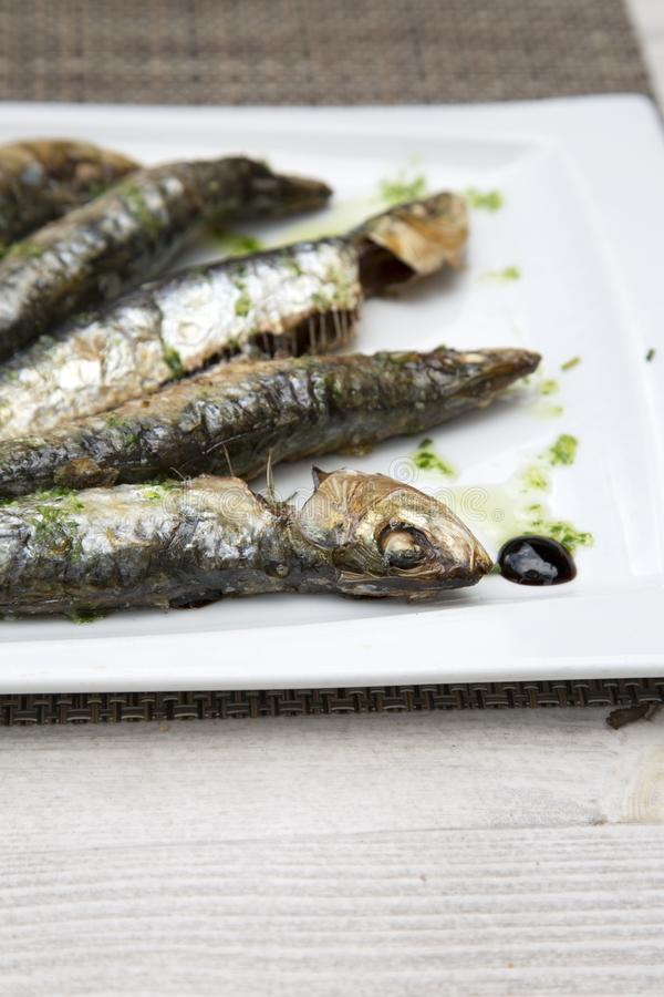 Sardine Fish, Majorca. Sardine Fish in Majorca, Spain stock photography