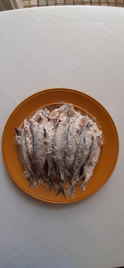 Sardine. Healthy, meal, dishes, preparing royalty free stock images