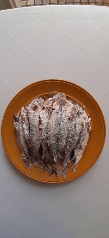 Sardine. Meal, dishes, healthy, preparing, preparingmeal royalty free stock photography