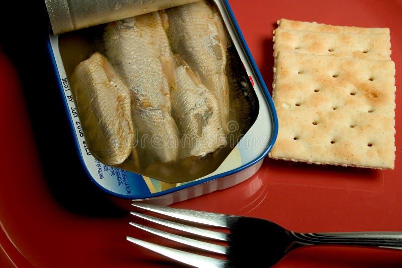 sardinemellanmål royaltyfri fotografi