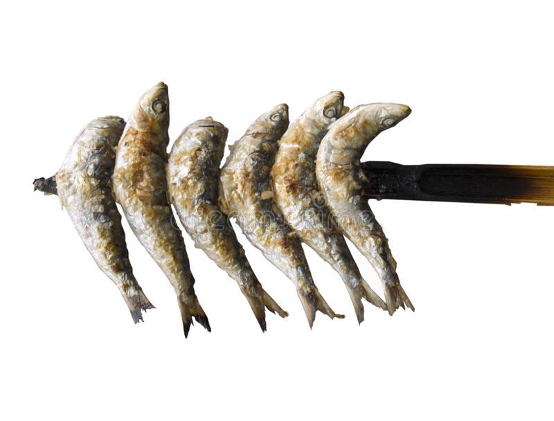 Sardines. On a wooden stick isolated stock photography