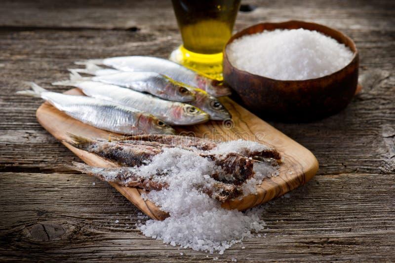Sardines avec du sel image stock