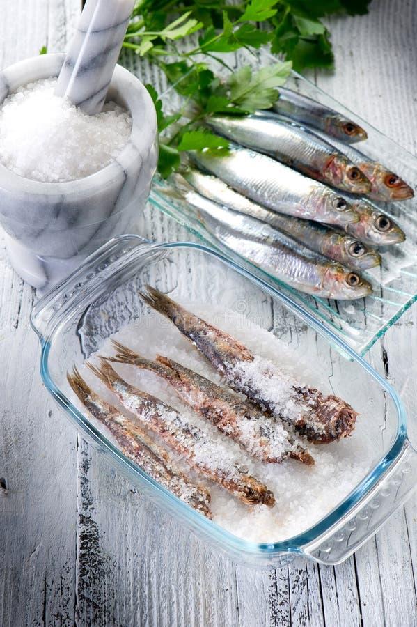 Sardines avec du sel photos libres de droits