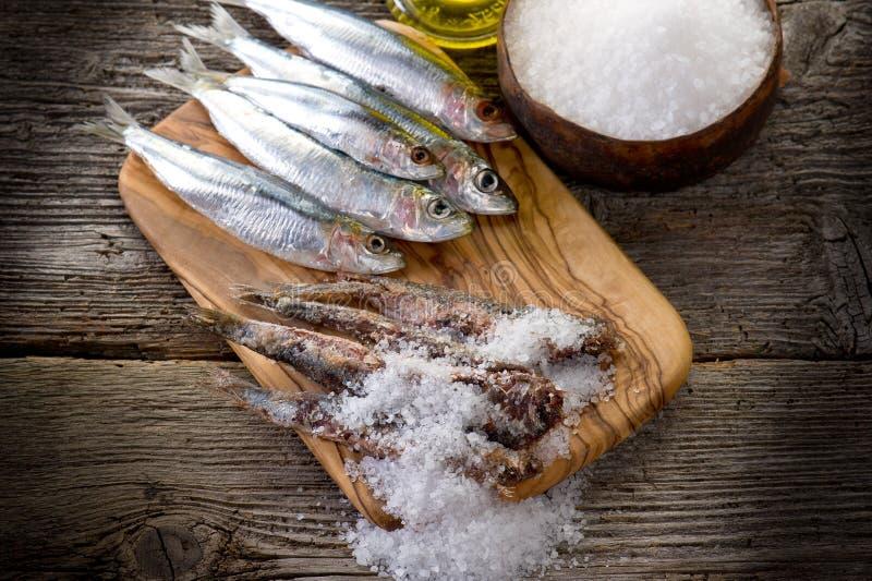 Sardines avec du sel photo libre de droits