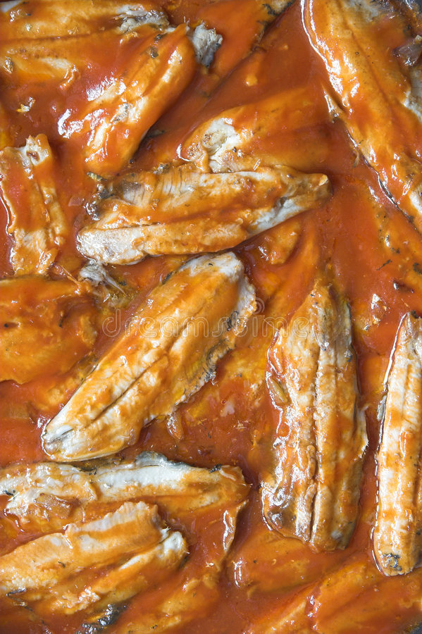 Sardines avec la sauce tomate photographie stock