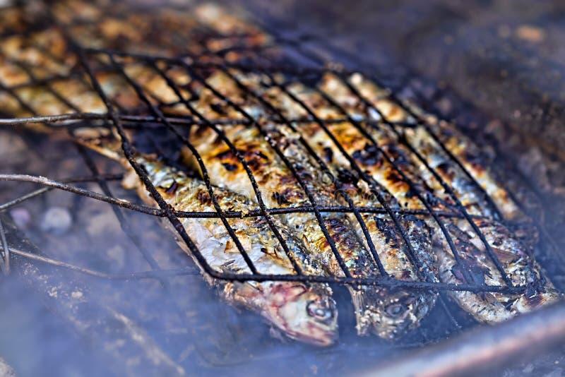 Sardines on barbecue. Street food stock photo
