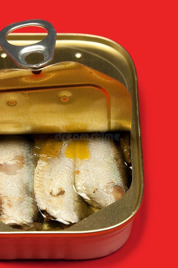 Sardines bidon photos libres de droits